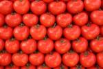tomatoes.jpg-151