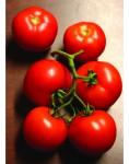 395_cluster_grande_tomato_1